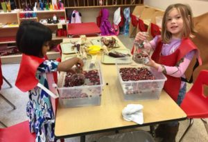 float-sink-cranberries-enrichment